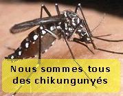 chikungunya.net  nous sommes tous des chikungunyés